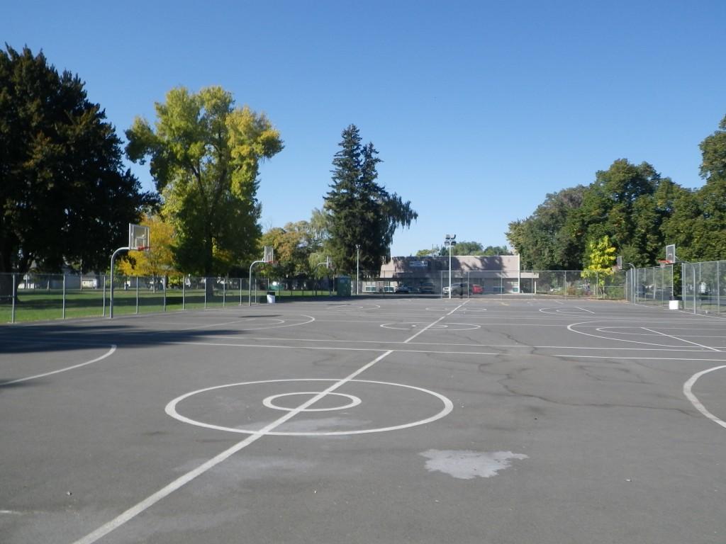 Miller - Basketball_2