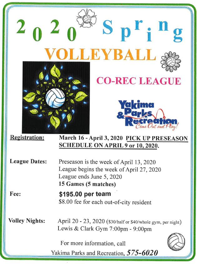 2020 Spring Volleyball Flyer
